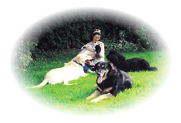 Celia with Canine Resort guests